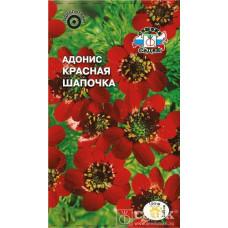 Адонис Красная шапочка