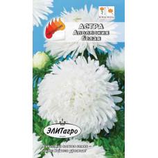 Астра Аполлония Белая А/А