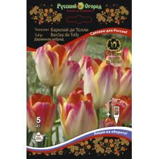 Тюльпан Российские гиганты Барклай-де-Толли (5шт) луковицы