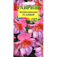 Бегония ампел Алькор махровая розовая Гавриш
