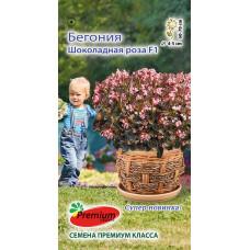 Цветы Бегония Шоколадная Роза 5шт