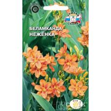 Беламканда (Леопардовая лилия) Неженка