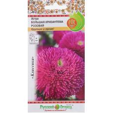 Астра Большая Хризантема розовая НК