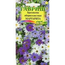 Брахикома Иберисолистная Маргарита низкий цветоч ковер Гавриш
