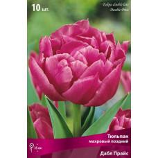 Тюльпан Махровый Дабл Прайс (10шт) луковицы