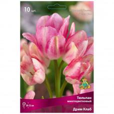 Тюльпан Дрим Клаб (10шт) луковицы