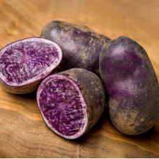 Картофель Фиолетовый 1кг