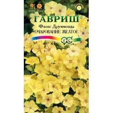 Флокс Очарование желтое Гавриш