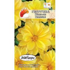 Георгина Миньон Желтая А/А