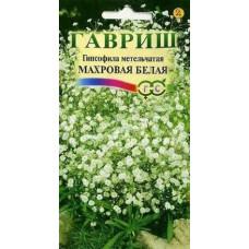 Гипсофила многолетняя Белая