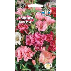 Годеция Мария Махровая огромные цветки на прочн стеблях смесь