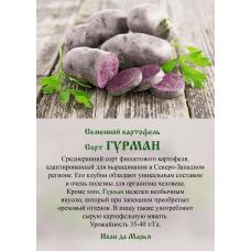 Картофель Гурман