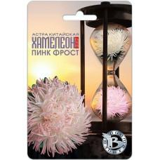 Астра SELECТ Хамелеон Пинк Фрост 40шт