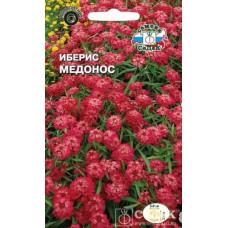 Иберис Медонос Красный