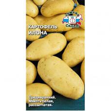 Картофель Илона Седек
