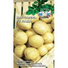 Картофель Лада F1 ср ранн высококрахмалист бел/желт уст болез 2