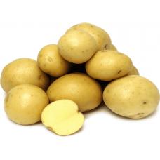 Картофель Каскад 1кг