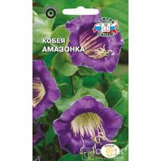 Кобея Лазающая Амазонка фиолетовая