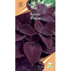 Колеус Фауст темно фиол-пурпурн
