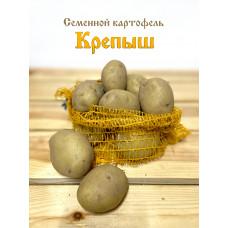 Картофель Крепыш 1кг