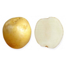 Картофель Ладожский 1кг