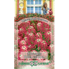 Лобулярия Нота Сердца (Чудесный балкон)Гавриш