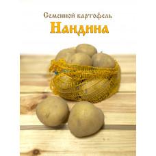Картофель Нандина 1кг