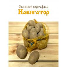 Картофель Навигатор 1кг