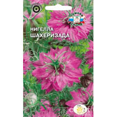 Нигелла Шахерезада (дамасская, ярко-розовая)