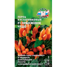 Перец кустарниковый Оранжевое ЧУДО Седек
