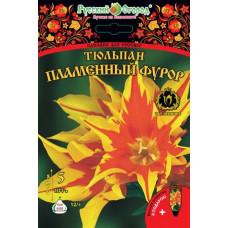 Тюльпан НК Пламенный фурор (5шт) луковицы