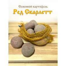 Картофель Ред Скарлетт 1кг
