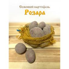 Картофель Розара 1кг