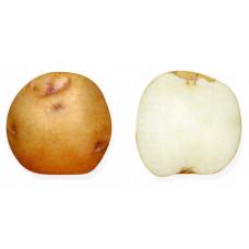 Картофель Ручеек 1кг
