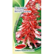 Цветы Сальвия Виста Ред Вайт F1