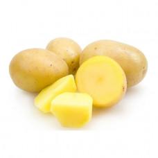 Картофель Сильвана 1кг