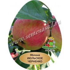 Яблоня Июльское Черненко (подвой - полукарлик)