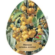 Яблоня Китайка золотая ранняя (подвой - полукарлик)