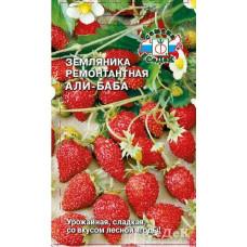 Земляника Али-Баба вкус лесной ягоды